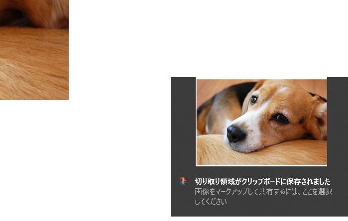 画像に alt 属性が指定されていません。ファイル名: 新しいビットマップ-イメージ07.jpg